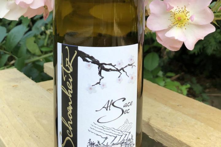 Unclassifiable wines